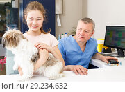 Купить «Happy girl with dog consulting by veterinarian», фото № 29234632, снято 3 мая 2018 г. (c) Яков Филимонов / Фотобанк Лори