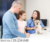 Купить «Woman veterinarian consulting family with dog», фото № 29234648, снято 3 мая 2018 г. (c) Яков Филимонов / Фотобанк Лори