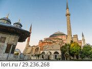 Купить «Hagia Sophia domes and minarets in the old town of Istanbul, Turkey, at sunrise.», фото № 29236268, снято 17 октября 2018 г. (c) Matej Kastelic / Фотобанк Лори
