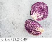 Купить «red cabbage on gray, copy space», фото № 29240404, снято 12 марта 2018 г. (c) Ольга Сергеева / Фотобанк Лори