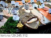 Купить «Whole monkfish (mouth open) on a fresh fish stall in Borough Market. London, England, UK.», фото № 29245112, снято 26 сентября 2018 г. (c) age Fotostock / Фотобанк Лори
