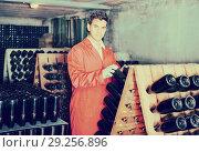 Купить «Wine maker taking care of seasoning bottles», фото № 29256896, снято 21 сентября 2016 г. (c) Яков Филимонов / Фотобанк Лори