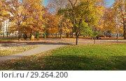 Купить «Moscow, Russia - October 17. 2018. Autumn park on clear day in Zelenograd», видеоролик № 29264200, снято 25 мая 2019 г. (c) Володина Ольга / Фотобанк Лори