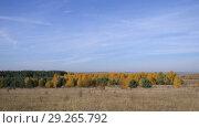 Купить «Vast Expanses Of Russia. Golden Autumn. Yellow-red forest on a background of blue sky with small cirrus clouds.», видеоролик № 29265792, снято 21 января 2020 г. (c) Константин Мерцалов / Фотобанк Лори