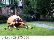 Купить «The house is decorated for Halloween:Huge inflatable spider near the entrance to the house and the web. Evening, Houston, Texas, United States», фото № 29275556, снято 18 октября 2018 г. (c) Ирина Кожемякина / Фотобанк Лори