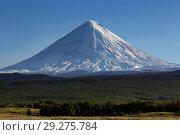 Купить «Вулкан Ключевская сопка на Камчатке», фото № 29275784, снято 2 сентября 2013 г. (c) А. А. Пирагис / Фотобанк Лори