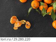 Купить «close up of mandarins on slate table top», фото № 29280220, снято 4 апреля 2018 г. (c) Syda Productions / Фотобанк Лори