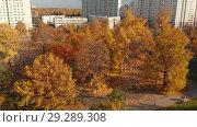 Купить «Moscow, Russia - October 17. 2018 Golden autumn in Zelenograd administrative district», видеоролик № 29289308, снято 11 марта 2019 г. (c) Володина Ольга / Фотобанк Лори