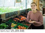 Купить «Woman choosing tomatoes among different varieties», фото № 29289448, снято 16 февраля 2019 г. (c) Яков Филимонов / Фотобанк Лори