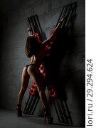 Brunette topless rearview tied to bdsm cross. Стоковое фото, фотограф Гурьянов Андрей / Фотобанк Лори