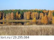 Купить «Осенний пейзаж с рекой Скорогодайкой», фото № 29295084, снято 17 октября 2018 г. (c) Елена Коромыслова / Фотобанк Лори
