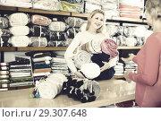 Купить «friendly female seller demonstrating coverlets to senior buyer in textile shop», фото № 29307648, снято 15 февраля 2017 г. (c) Яков Филимонов / Фотобанк Лори