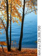 Купить «Осенний яркий пейзаж с березами над рекой», фото № 29308700, снято 17 октября 2018 г. (c) Татьяна Белова / Фотобанк Лори