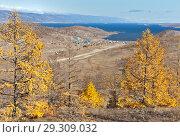 Купить «Baikal Lake in the autumn. Top view to the Small Sea Strait (Maloye More), Kurkut Bay and the shore with wooden tourist houses», фото № 29309032, снято 14 октября 2018 г. (c) Виктория Катьянова / Фотобанк Лори