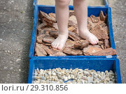 "Купить «Children walk barefoot along the ""trail of hardening"" with pebbles, sawdust, straw.», фото № 29310856, снято 21 июля 2018 г. (c) Акиньшин Владимир / Фотобанк Лори"