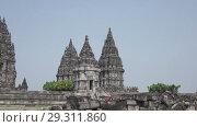 Купить «Candi Prambanan or Candi Rara Jonggrang is an 9th-century Hindu temple compound in Central Java, Indonesia», видеоролик № 29311860, снято 11 октября 2008 г. (c) Куликов Константин / Фотобанк Лори