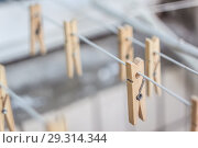 Купить «Wooden clothespins on a clothesline, blur, light photo. The concept of eco-consumption, the use of natural materials, awareness», фото № 29314344, снято 21 июля 2018 г. (c) Tetiana Chugunova / Фотобанк Лори