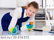 Купить «Woman in uniform is cleaning dust from the desk», фото № 29314572, снято 20 августа 2019 г. (c) Яков Филимонов / Фотобанк Лори