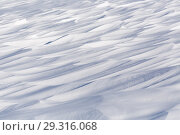 Купить «Snow background in blue tone», фото № 29316068, снято 13 ноября 2018 г. (c) Владимир Пойлов / Фотобанк Лори