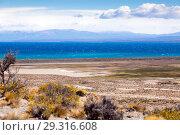 Купить «Views of Lago Buenos Aires, Patagonia, Argentina», фото № 29316608, снято 30 января 2017 г. (c) Яков Филимонов / Фотобанк Лори