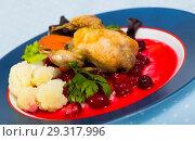 Купить «Baked quail with caramelized carrots and cranberry sauce», фото № 29317996, снято 17 января 2019 г. (c) Яков Филимонов / Фотобанк Лори
