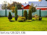 Купить «Arrangement of shrubs and flowers on a green lawn.», фото № 29321136, снято 8 октября 2018 г. (c) Елена Блохина / Фотобанк Лори