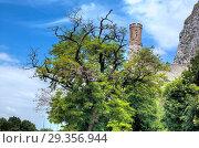 Devin castle, Bratislava, Slovakia. Стоковое фото, фотограф Ivan Vdovin / age Fotostock / Фотобанк Лори