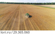 Купить «Aerial view of combine harvester on wheat field. Tracking the subject in the center of the frame.», видеоролик № 29365060, снято 14 сентября 2018 г. (c) Андрей Радченко / Фотобанк Лори
