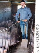 Mature farmer in hangar with hogs. Стоковое фото, фотограф Яков Филимонов / Фотобанк Лори