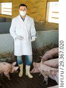 Купить «Veterinarian in protective clothing standing in sty», фото № 29367020, снято 17 января 2019 г. (c) Яков Филимонов / Фотобанк Лори