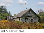 Купить «Old broken log wooden house in Russian village», фото № 29384072, снято 3 сентября 2018 г. (c) Алексей Кузнецов / Фотобанк Лори