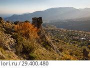 Купить «Beautiful view in the Valley of stone ghosts in the mountains Demerdzhi and yellow tree in the autumn Crimea», фото № 29400480, снято 12 октября 2018 г. (c) Яна Королёва / Фотобанк Лори