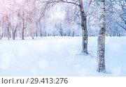 Купить «Winter landscape - frosty trees in winter forest in the sunny morning. Winter landscape with snowy trees. Tranquil winter forest nature in soft morning sunlight», фото № 29413276, снято 11 декабря 2017 г. (c) Зезелина Марина / Фотобанк Лори