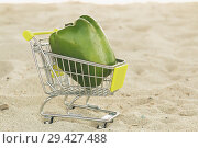 Купить «Green sweet pepper paprika in shopping trolley standingon the sand. Green bell pepper on cart for sell. Vegetable loaded in a miniature shopping cart on sand background. Healthy diet food. Close up.», фото № 29427488, снято 6 июня 2020 г. (c) Marina Sharova / Фотобанк Лори