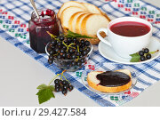 Купить «Ripe black currant berries, tasty homemade jam on white bread and berry kissel in a cup. Healthy Vitamin Breakfast», фото № 29427584, снято 3 августа 2018 г. (c) Виктория Катьянова / Фотобанк Лори
