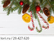 Купить «Still life of Christmas tree branches with cones and red balls. Bright candy canes and slices of dry fragrant oranges on a white background. Empty place for greeting text», фото № 29427620, снято 19 июля 2018 г. (c) Виктория Катьянова / Фотобанк Лори