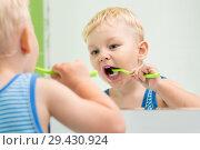 Купить «Little kid boy brushing teeth in front of a mirror in bathroom», фото № 29430924, снято 25 июня 2019 г. (c) Оксана Кузьмина / Фотобанк Лори