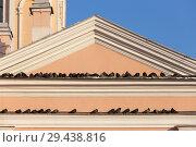 Купить «Flock of pigeons on the eaves», фото № 29438816, снято 3 февраля 2012 г. (c) Argument / Фотобанк Лори
