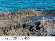 Купить «fragment of stone coast and waters of Mediterranean. Cyprus», фото № 29439456, снято 1 ноября 2018 г. (c) Володина Ольга / Фотобанк Лори