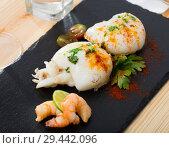 Купить «Roasted sepia served with shrimps», фото № 29442096, снято 18 января 2019 г. (c) Яков Филимонов / Фотобанк Лори