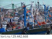 Купить «Many fishing boats in port», фото № 29442668, снято 27 февраля 2018 г. (c) Михаил Коханчиков / Фотобанк Лори