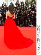 Купить «Celebrities attend the premiere for 'Yomeddine' at the Palais de Festival in Cannes, France. Featuring: Catrinel Menghia Where: Cannes, France When: 08 May 2018 Credit: Euan Cherry/WENN.», фото № 29445252, снято 8 мая 2018 г. (c) age Fotostock / Фотобанк Лори