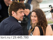 Купить «71st annual Cannes Film Festival - Un Certain Regard - Jury Photocall Featuring: Benicio del Toro, Virginie Ledoyen Where: Cannes, France When: 09 May 2018 Credit: Euan Cherry/WENN.», фото № 29445780, снято 9 мая 2018 г. (c) age Fotostock / Фотобанк Лори