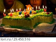 Купить «Праздничный торт с зажёнными свечами», эксклюзивное фото № 29450516, снято 6 октября 2018 г. (c) Игорь Низов / Фотобанк Лори