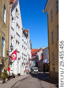 Купить «Средневековый город в Таллине с живописными постройками и улицами. Эстония», фото № 29455456, снято 29 марта 2018 г. (c) Кекяляйнен Андрей / Фотобанк Лори