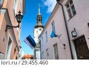 Купить «Эстонские флаги на фасадах домов в старой части Таллина. Эстония», фото № 29455460, снято 29 марта 2018 г. (c) Кекяляйнен Андрей / Фотобанк Лори