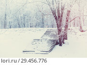 Купить «Winter landscape in cold tones - winter frosty trees and old stone stairs in the winter park under snowfall, retro tones applied», фото № 29456776, снято 11 декабря 2017 г. (c) Зезелина Марина / Фотобанк Лори