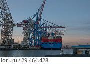 Купить «Гамбург, Германия. Вид на контейнерный терминал с борта прогулочного катера. Вечер», фото № 29464428, снято 3 ноября 2018 г. (c) Наталья Николаева / Фотобанк Лори