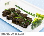Купить «Grape rolls Sarni cooked in leaves and served at plate, Bulgarian cuisine», фото № 29464988, снято 15 декабря 2018 г. (c) Яков Филимонов / Фотобанк Лори