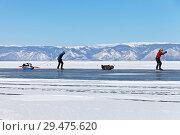 Купить «Baikal Lake. Extreme tourists travel on skates along the frozen Small Sea Strait (Maloe More) in frosty and windy weather», фото № 29475620, снято 22 февраля 2015 г. (c) Виктория Катьянова / Фотобанк Лори